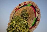 Highlights from Burkina Faso's Festival of Masks