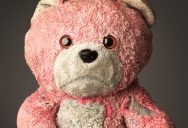 Portraits of Lovingly Worn Stuffed Animals