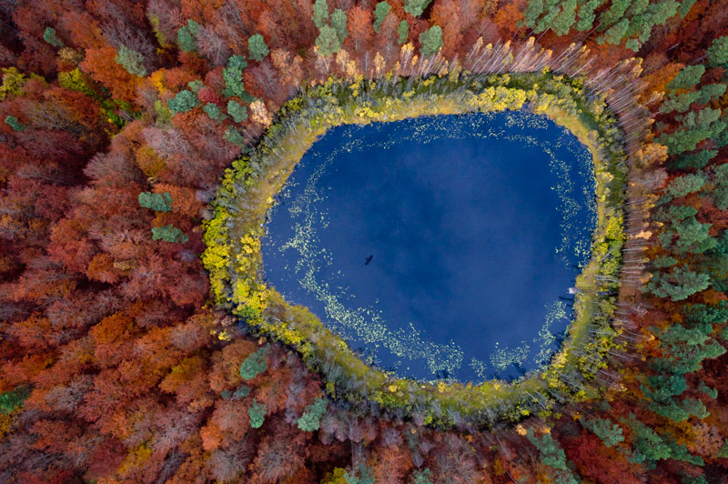 Picture of the Day: Fall in Pomerania, Poland