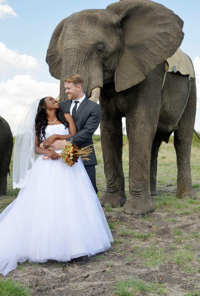 african safari wedding (11)