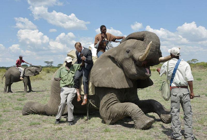 african safari wedding (5)