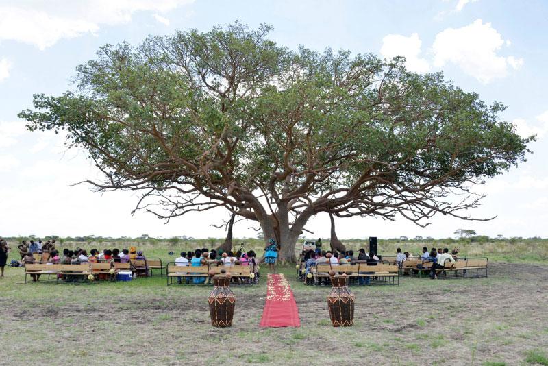 african safari wedding (7)