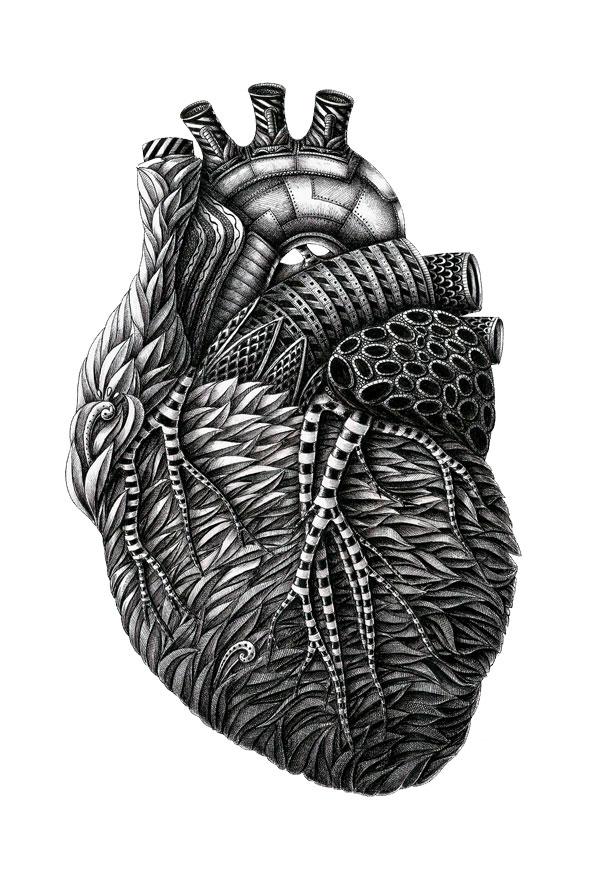 Alex Konahin ink illustrations (1)