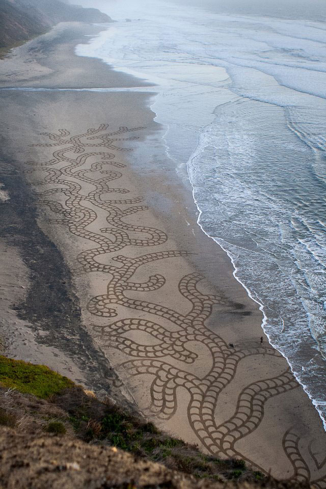 beach sand art with a by rake andres amador (10)