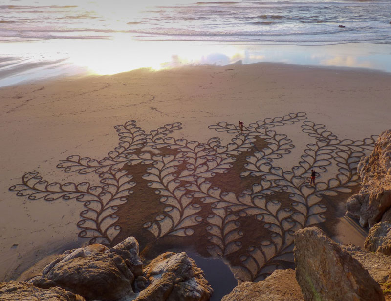 beach sand art with a by rake andres amador (16)