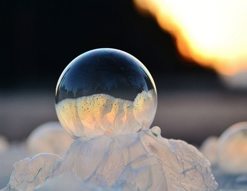 close ups of frozen soap bubbles angela kelly macro (13)