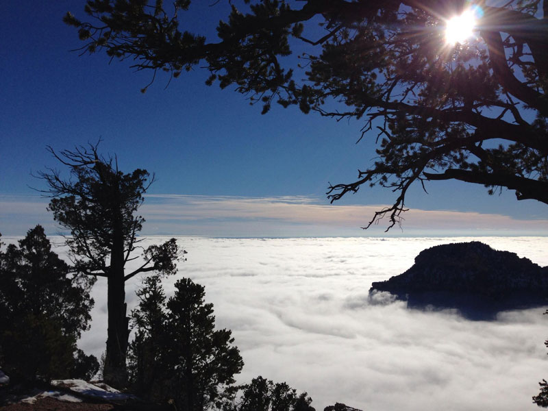 grand canyon filled with fog november thanksgiving 2013 (10)