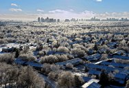 Picture of the Day: White Christmas in Toronto