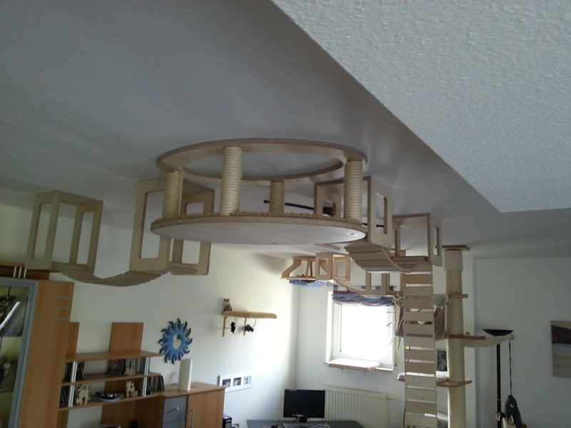 ceiling furniture for cats by goldatze gold paw (1)