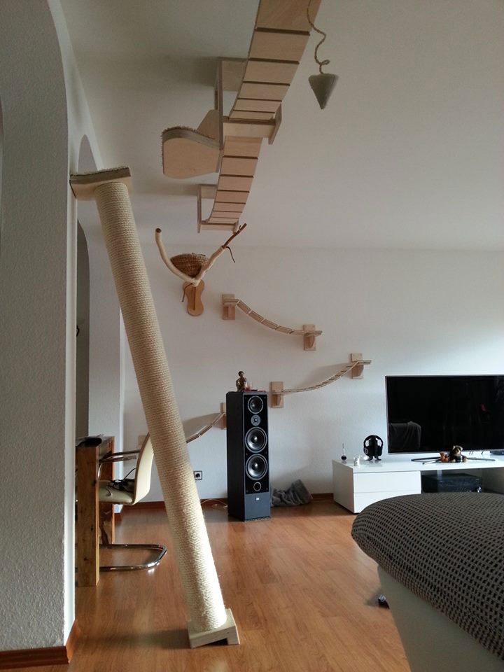ceiling furniture for cats by goldatze gold paw (13)