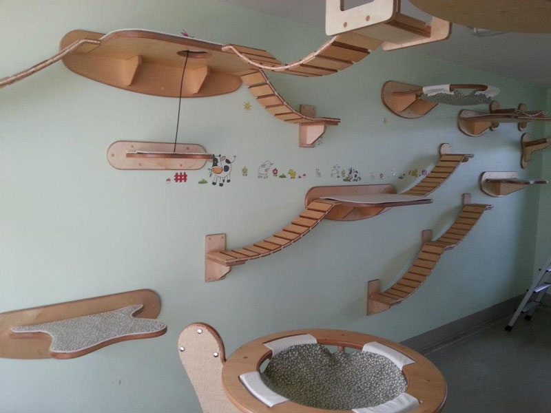 ceiling furniture for cats by goldatze gold paw (4)