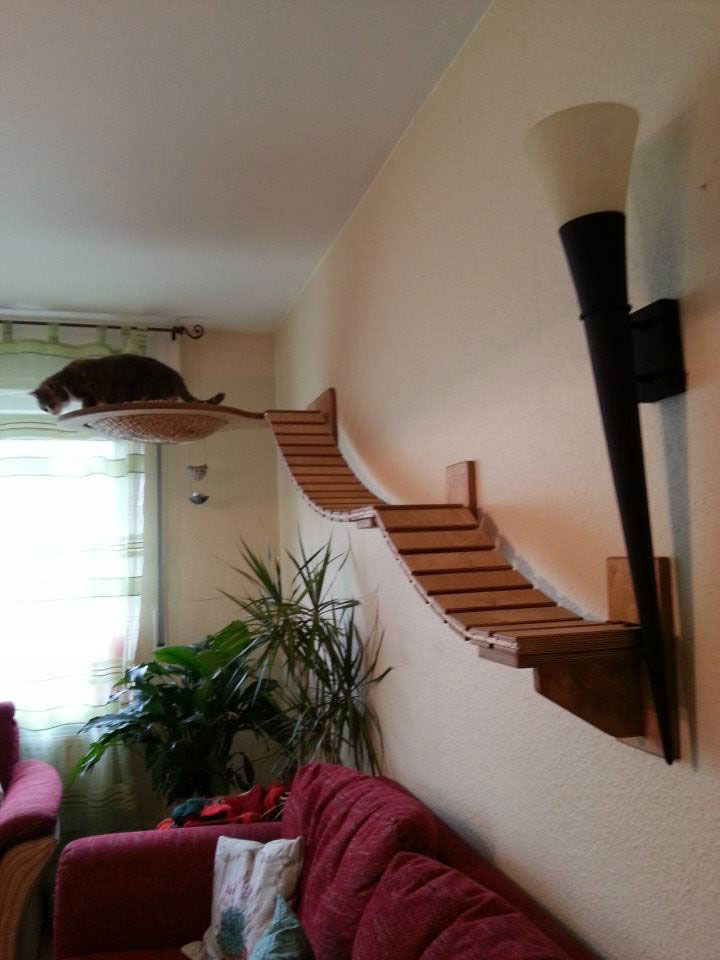 ceiling furniture for cats by goldatze gold paw (7)