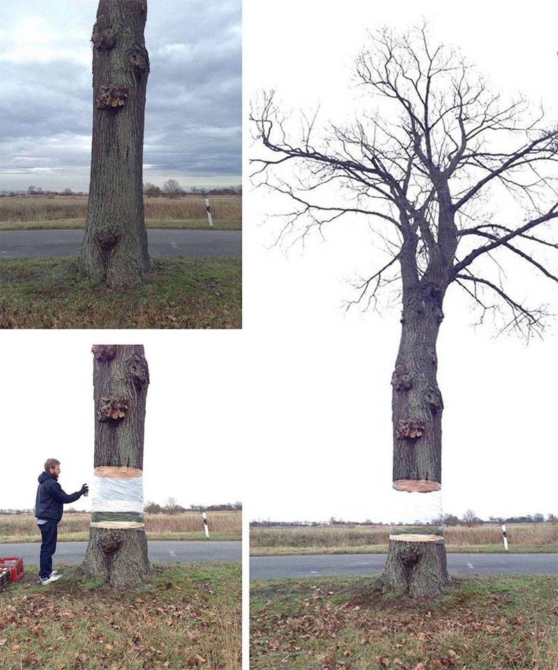 levitating tree street art illusion by daniel siering and mario shu 3 Takeshi Muratas Hypnotic Liquid Metal Orb