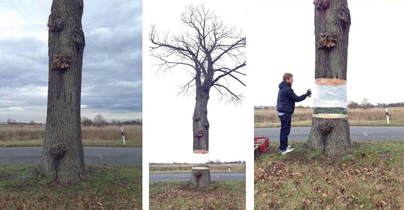 levitating-tree-street-art-illusion-by-daniel-siering-and-mario-shu-(7)