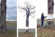 Artists Levitate Tree Using Foil and Spray Paint