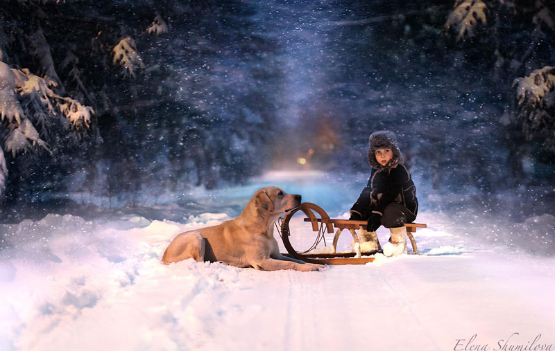 mother takes touching portraits of sons with animals elena shumilova (2)