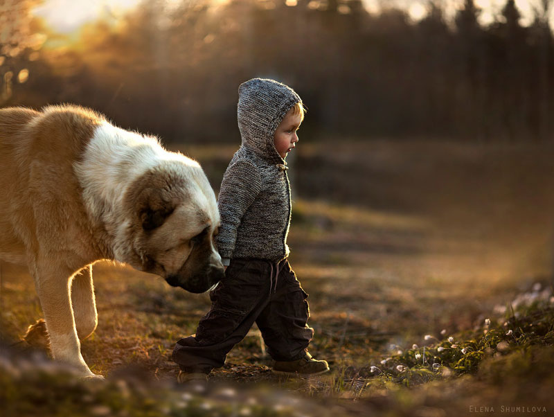 mother takes touching portraits of sons with animals elena shumilova (3)