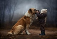 A Mother's Touching Portraits of Her Sons Bonding with Animals