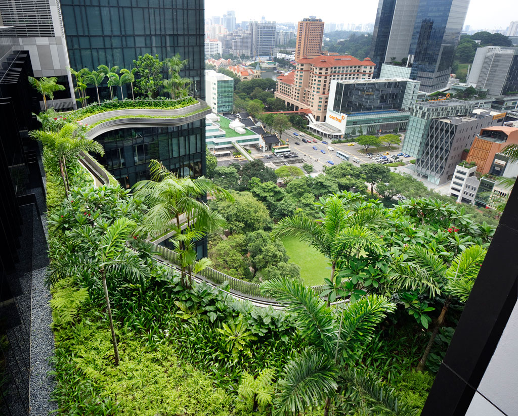 parkroyal on pickering hotel singapore skygardens by woha (2)