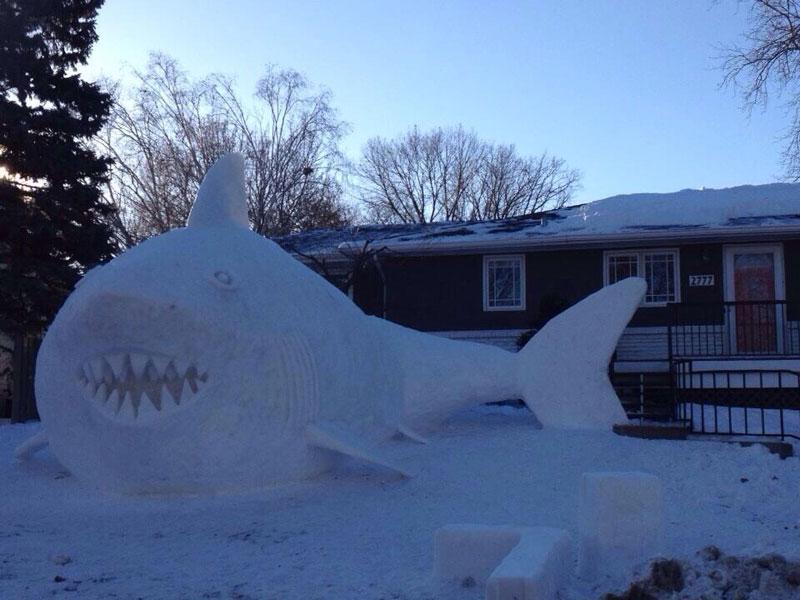 snow shark The Shirk Report   Volume 247