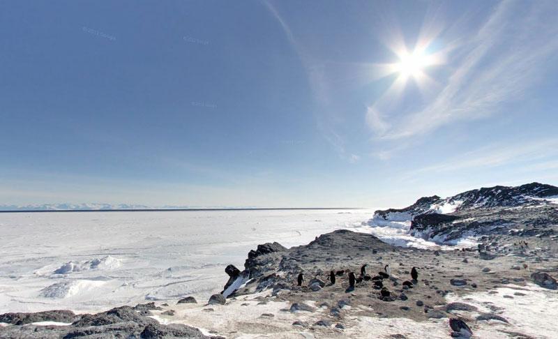adelie penguin rookery Exploring Antarctica with Google Street View