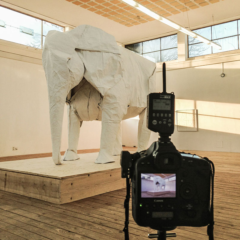 sipho mabona folds a life sized origami white elephant from a single sheet of paper (8)