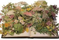 Discarded Books Transformed Into Exploding 3D Collages
