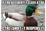27 Tips from the World's Smartest Duck