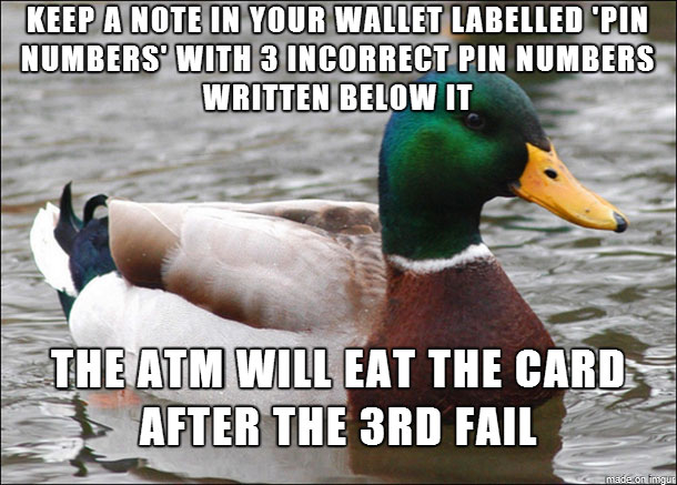 tips from the worlds smartest duck best of actual advice mallard (12)