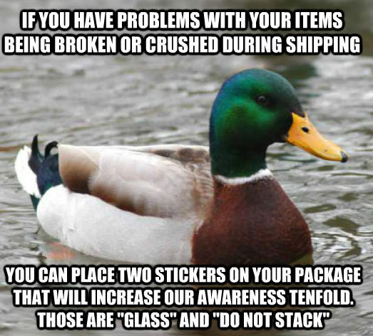 tips from the worlds smartest duck best of actual advice mallard (17)