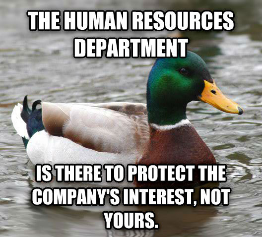 tips from the worlds smartest duck best of actual advice mallard (21)