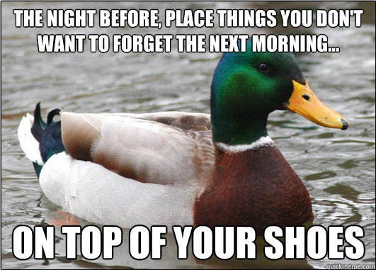 tips from the worlds smartest duck best of actual advice mallard (24)