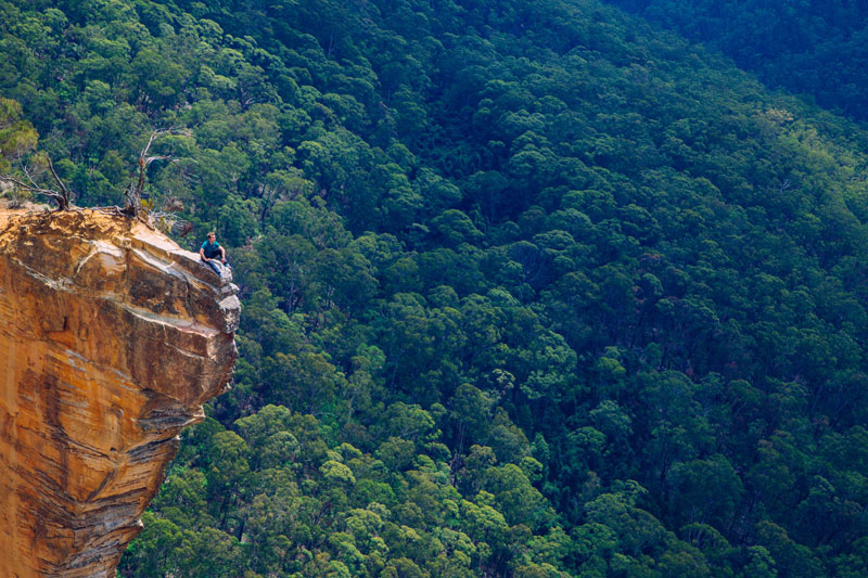 hiking in the blue mountains australia Picture of the Day: Just Hanging Out   Blue Mountains, Australia