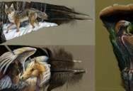 This Painter Uses Old Turkey Feathers as Her Canvas