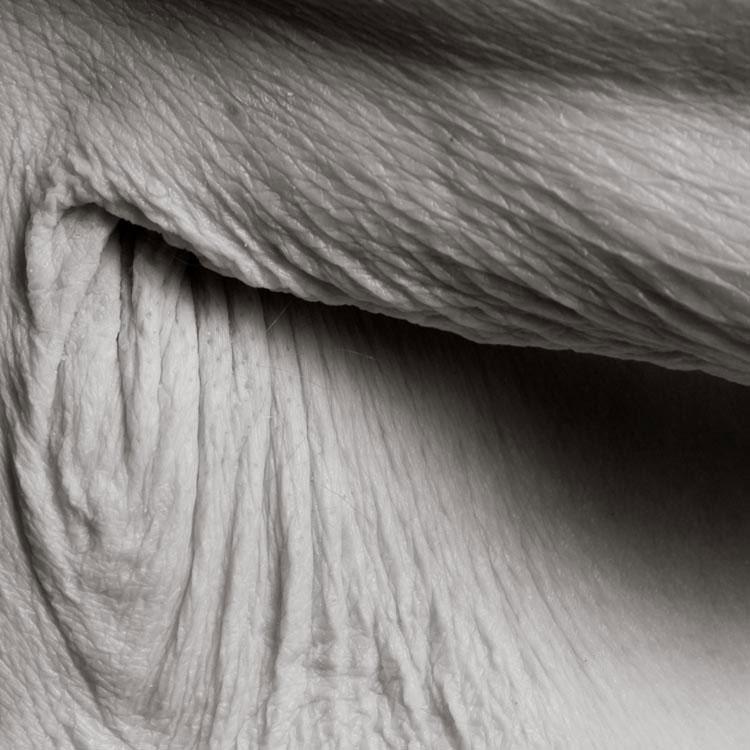 portraits of centenarians by anastasia pottinger (1)