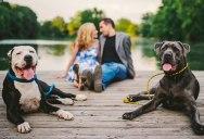 Feel the Love: 15 Creative Engagement Photos