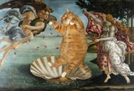 This Artist Photoshops Her Fat Cat Into Famous Artworks and it's Hilarious