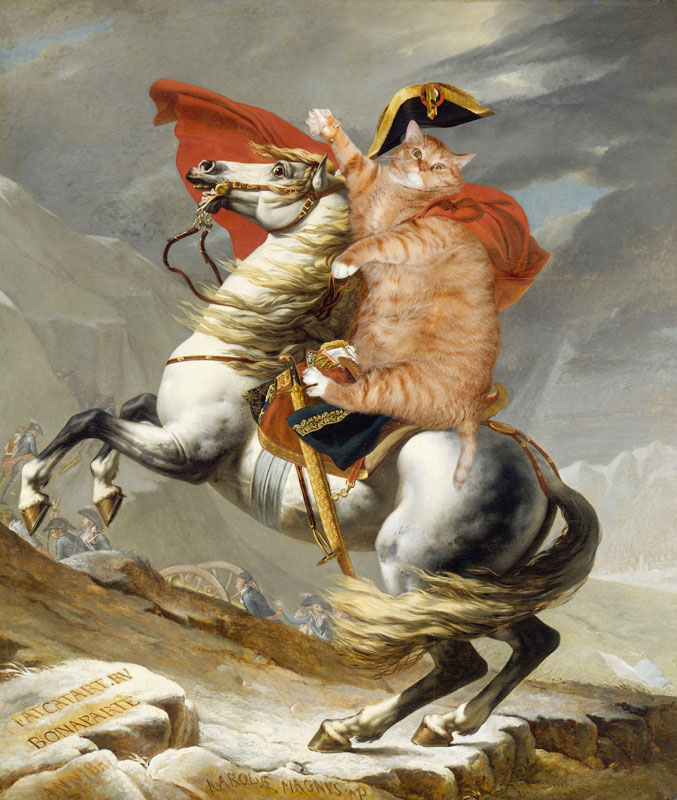 fat cat photoshopped into famous artworks (16)