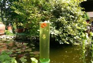Picture of the Day: A Watchtower for Goldfish