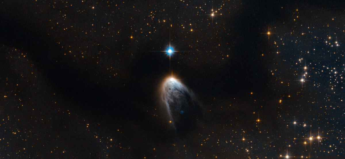 the birth of a star hubble The Top 100 Pictures of the Day for 2014