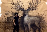 Animal Murals that Seem to Leap Off the Wall