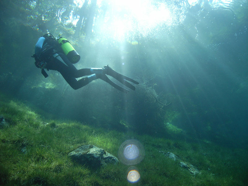 austria underwater park gruner see green lake styria Picture of the Day: A Submerged Park in Austria