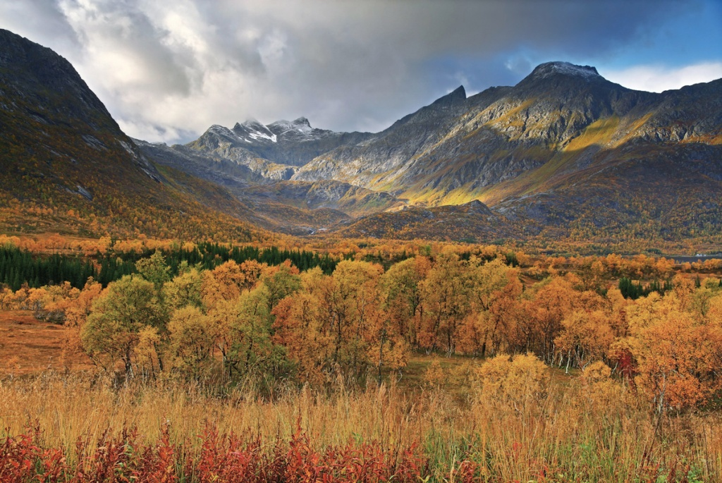 Picture of the Day: Autumn in Norway