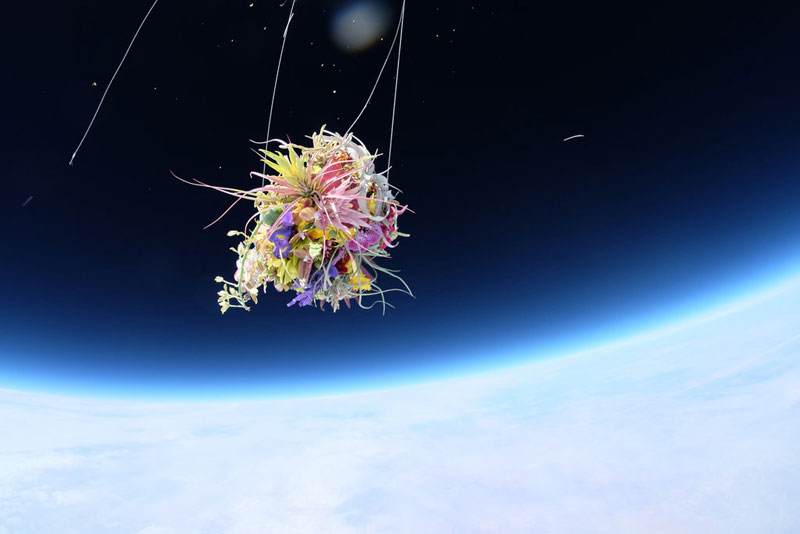 azuma makoto sends flower bouquet into space (1)