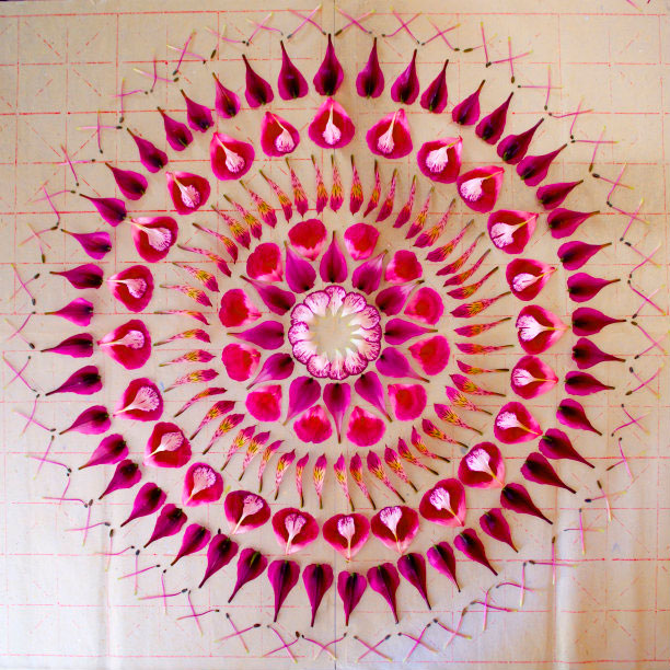 flower mandalas by kathy klein (1)