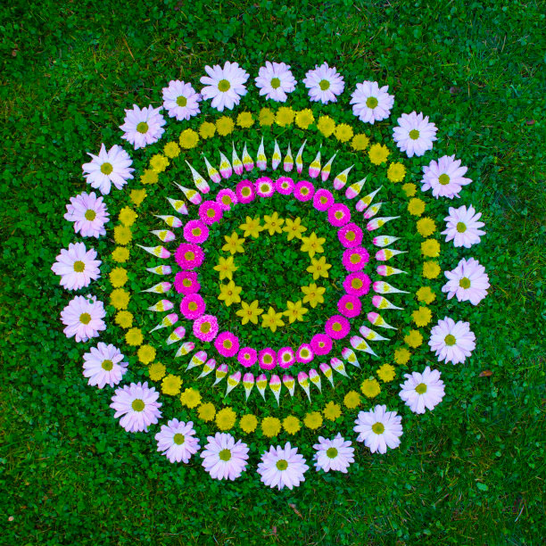 flower mandalas by kathy klein (10)