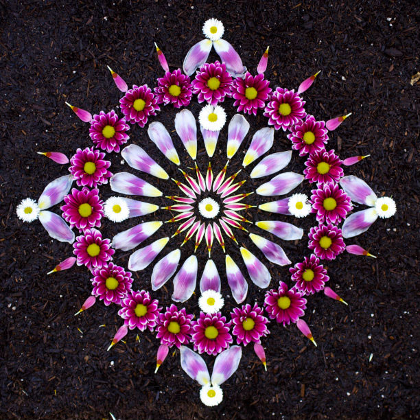 flower mandalas by kathy klein (14)
