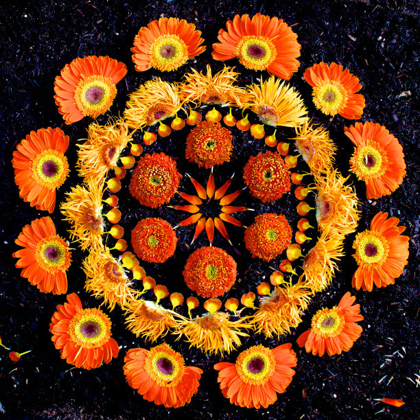 flower mandalas by kathy klein (15)