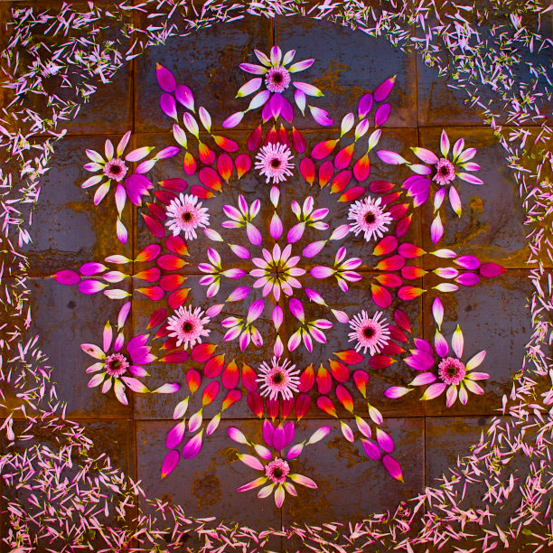 flower mandalas by kathy klein (6)