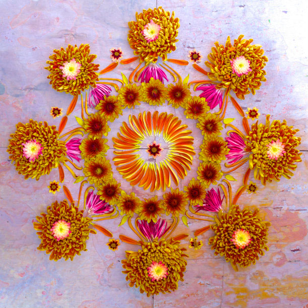 flower mandalas by kathy klein (7)